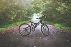 mountain-bike-state-park-trails