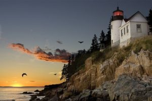 lighthouse-maine-bird-watching