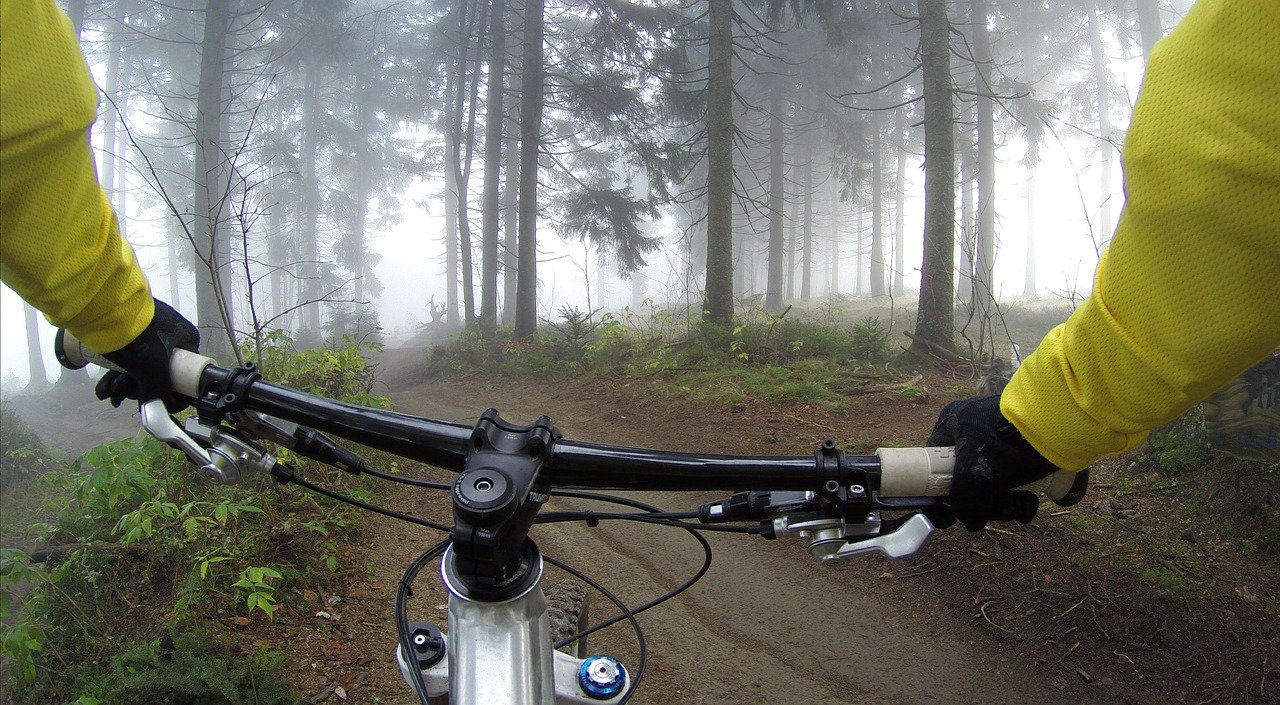 cycling-handlebars-view
