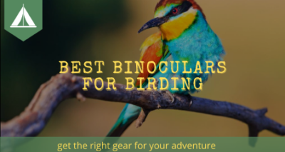best binoculars for birding banner 450