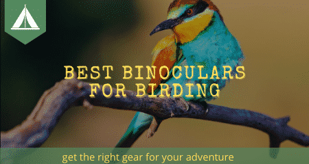best binoculars for birding banner 450