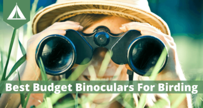 best budget binoculars for birding