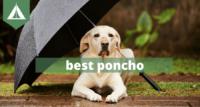 best ponchos