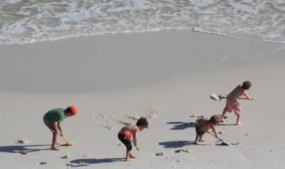 kids digging at beach playing