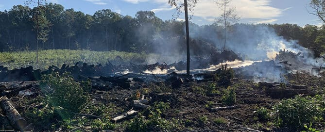 Allegan State Game area fire