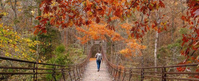 Aspira Grand Winner - Tishomingo State Park in Mississippi by Dean Schumacher