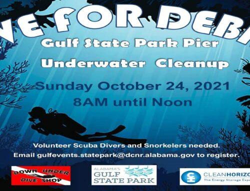 DIVE FOR DEBRIS: Gulf State Park pier seeks cleanup volunteers