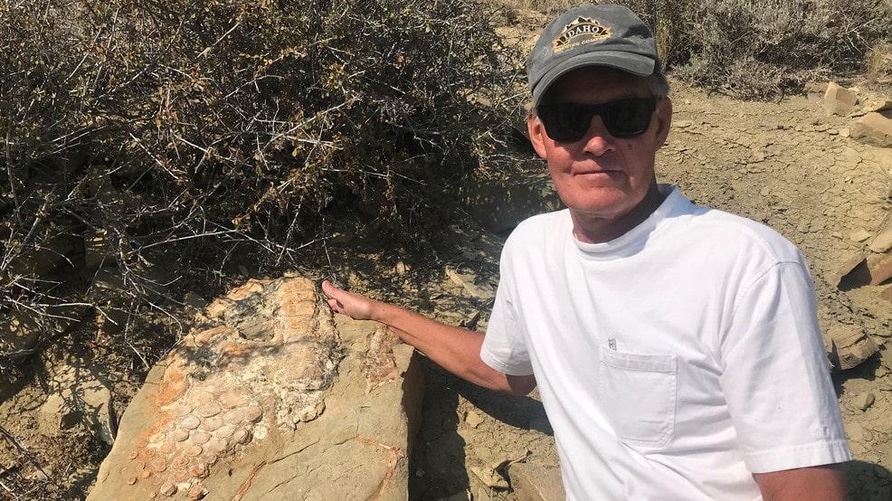 Fish Lizard fossil found at Flaming Gorge Utah