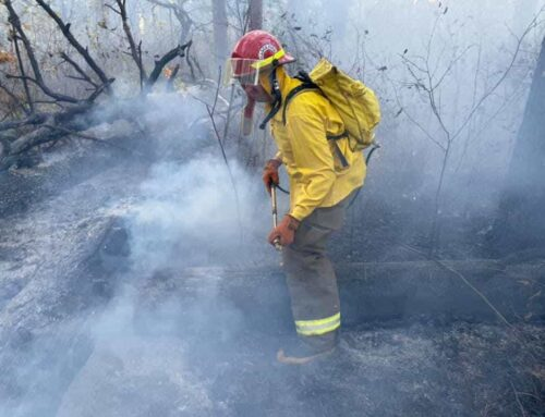 Wildfire at Itasca State Park contained at 80%
