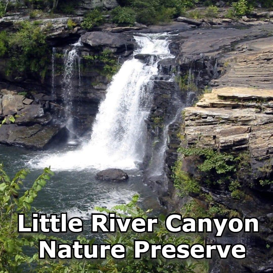 Little river canyon nature preserve- square
