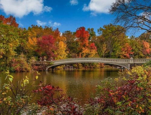 300M invested to ensure State Parks in New York are in their top condition