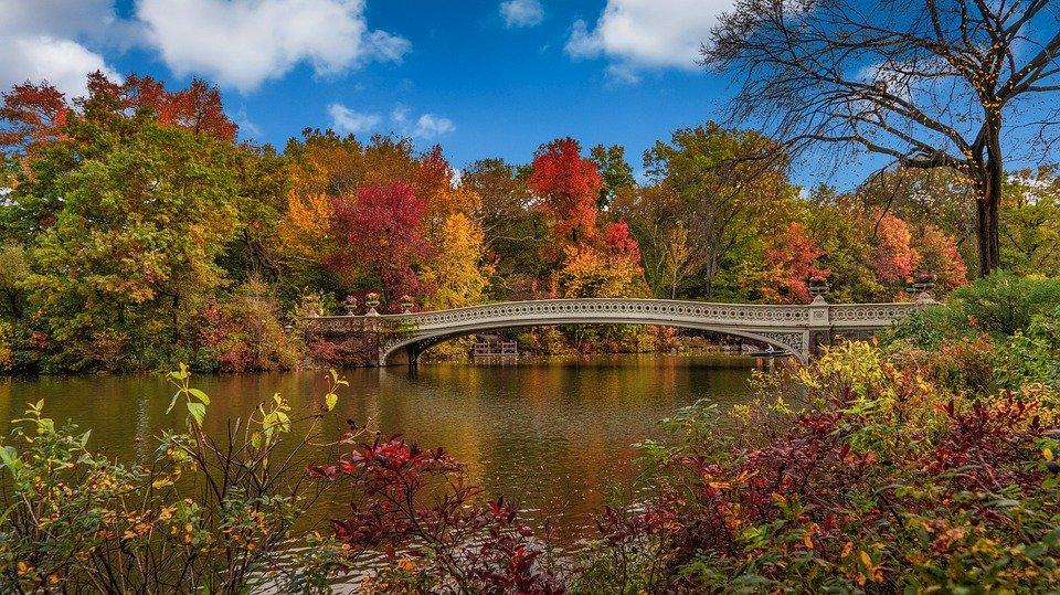 central park new york state park