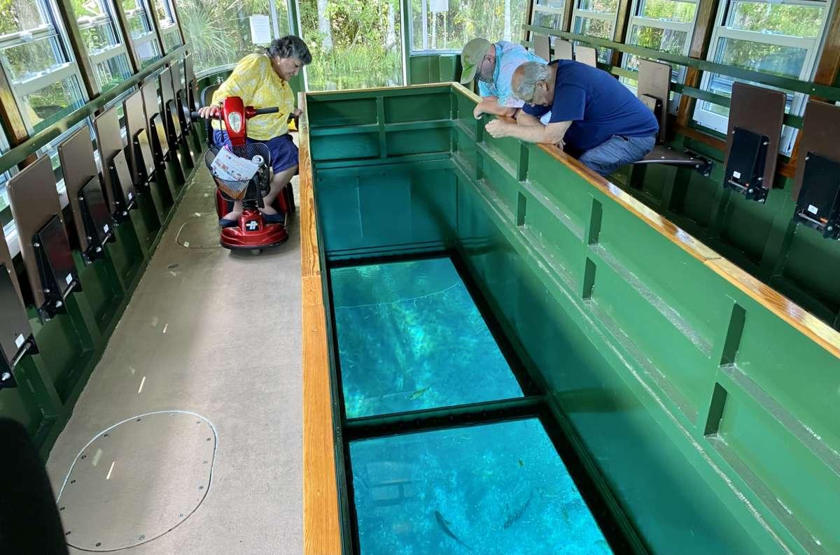glass bottom boats