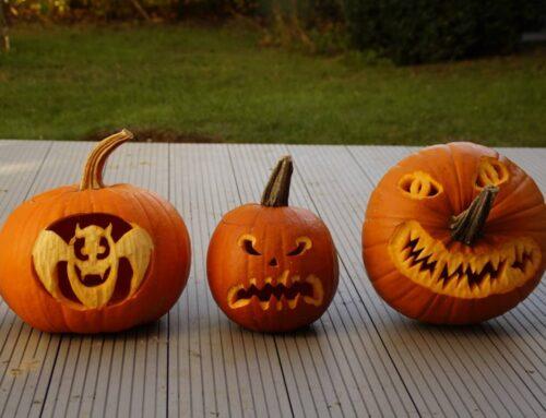 Fall Festival, Pumpkin Carving & Pumpkin Float show to return to Parker Dam State Park