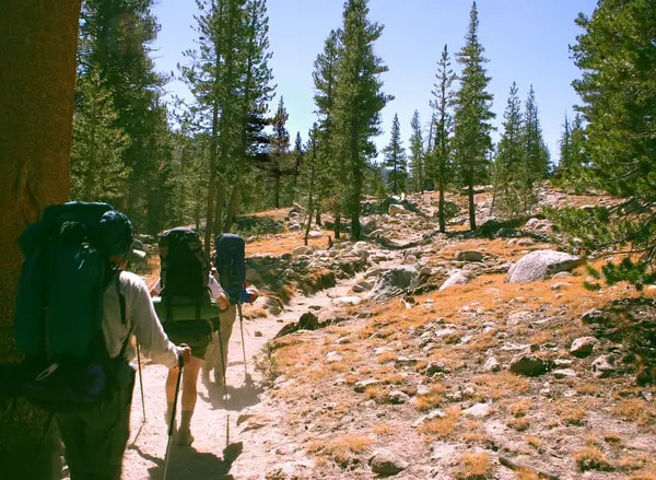 trail boy scout
